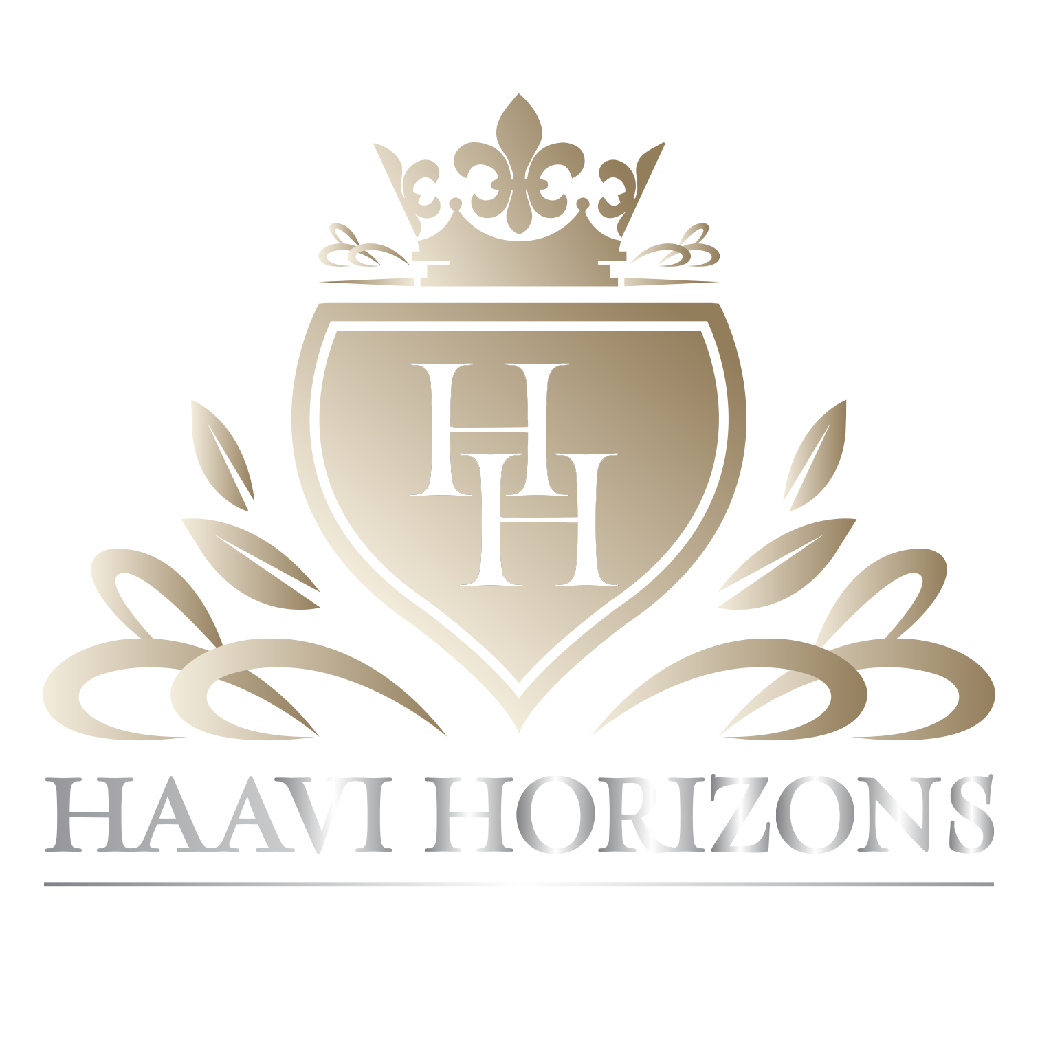 Haavi Horizons Group